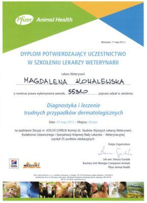 dermatologia-t049683