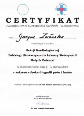 echokardiografia-566763