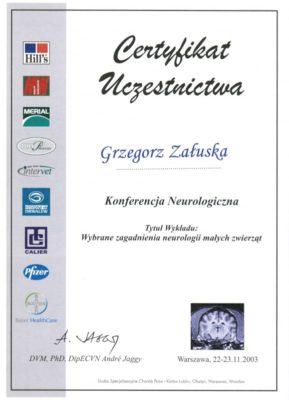 neurologia-50683856