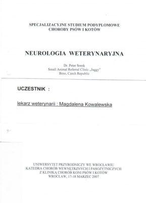 neurologia-70948996