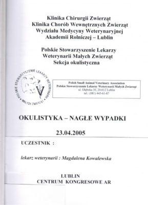 okulistyka-4096930